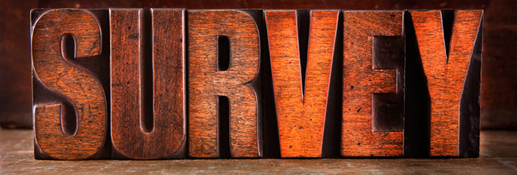 The word Survey carved in wood